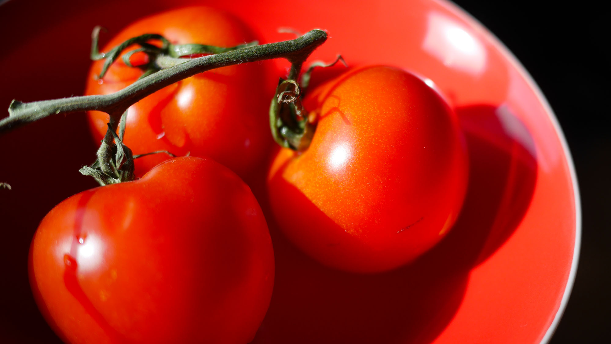 Tomaten in roter Schale